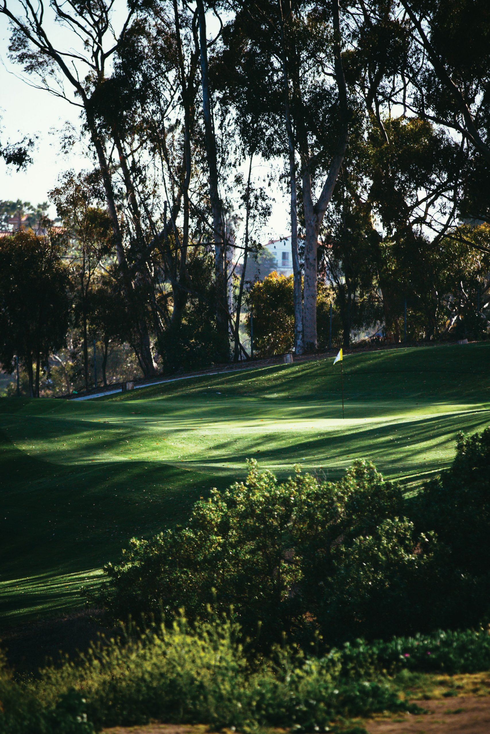 6th hole Goat Hill Park
