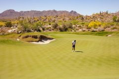 The Bad Little 9 at Scottsdale National Country Club