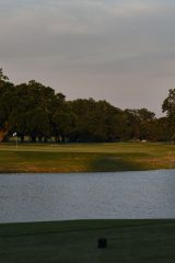 The par-3 14th hole at Bayou Oaks South Course. Photo by Ryan Young
