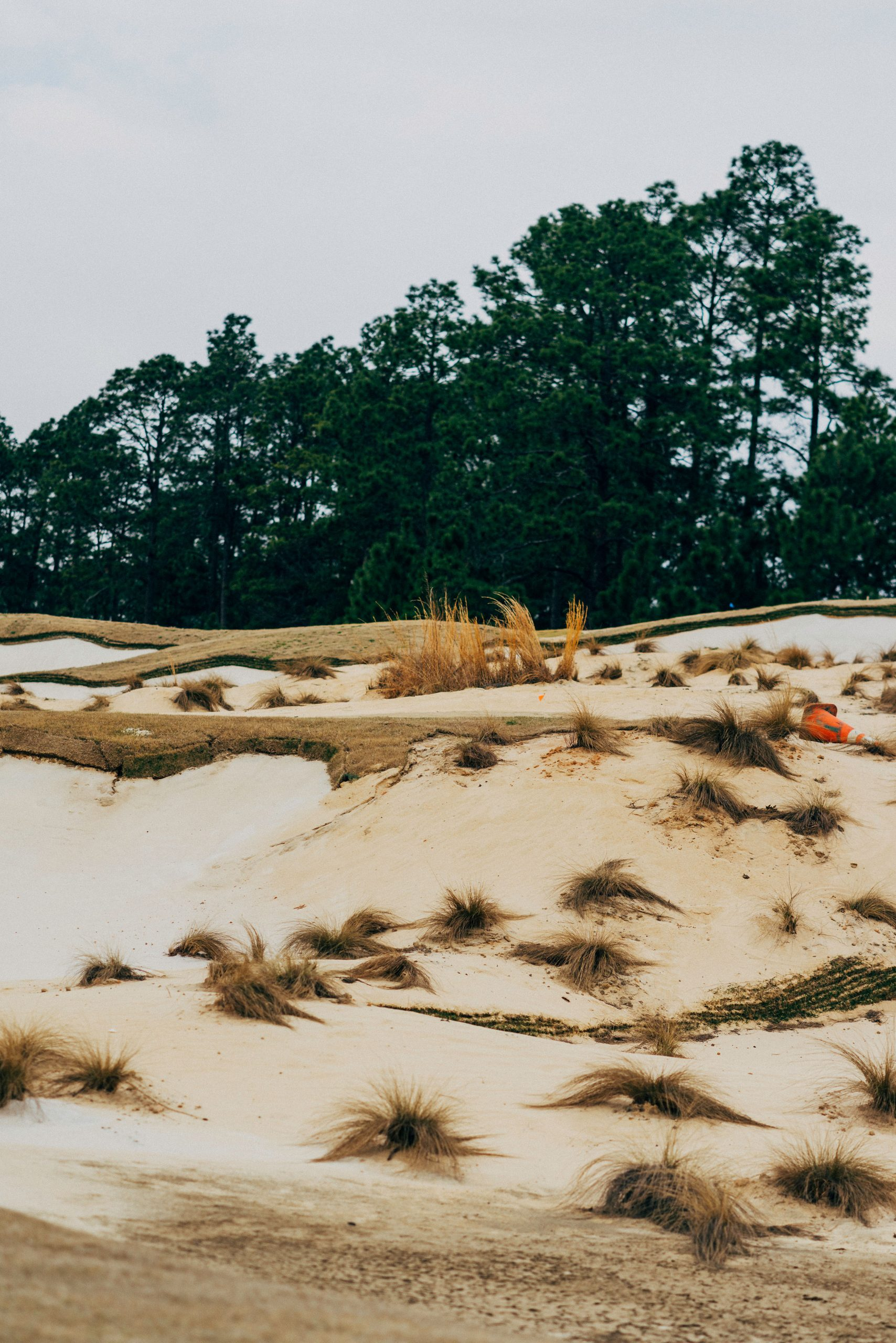 Sand Dune. Photo by Christian Hafer.