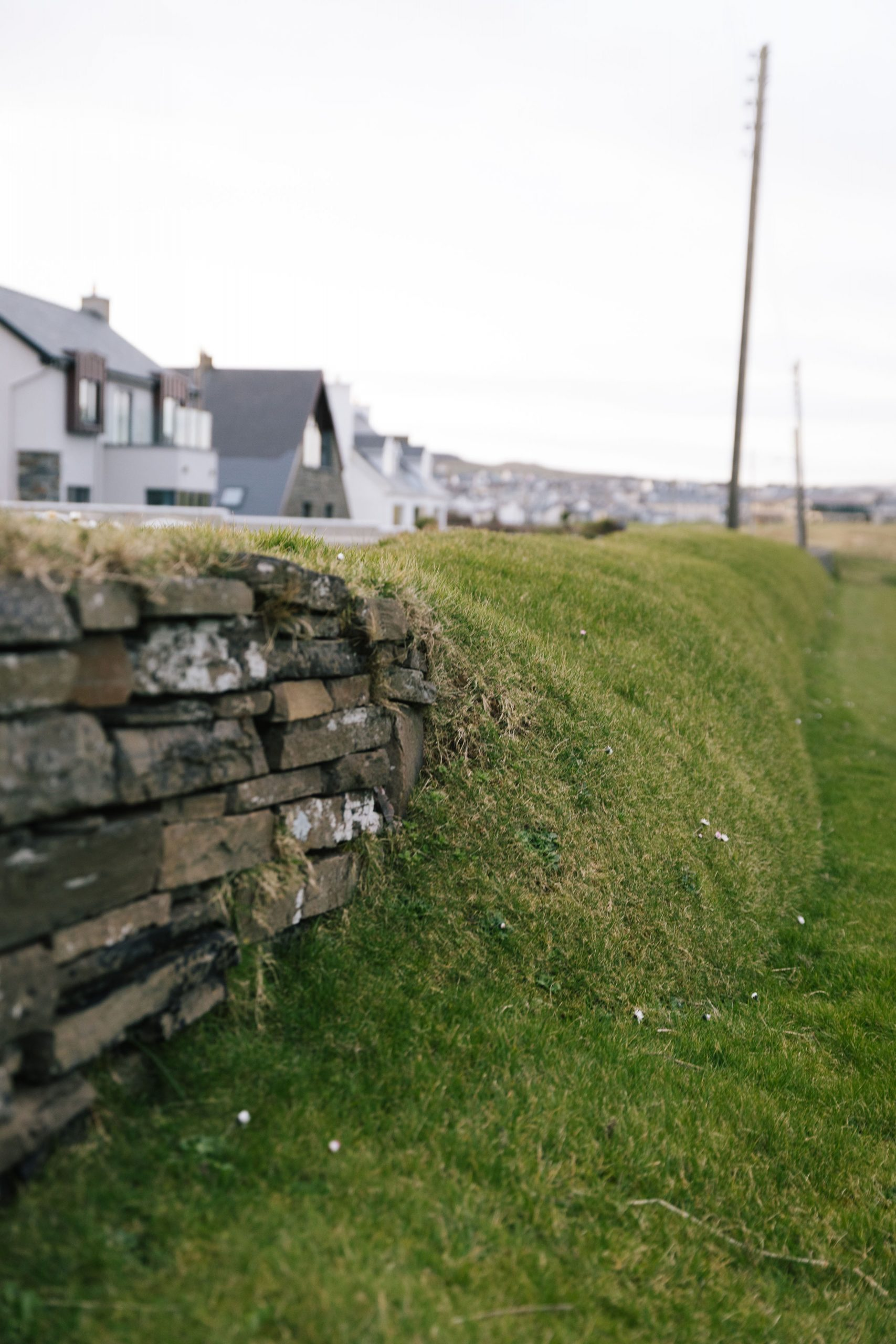 Picture of an old stone wall. Photo by Tom Shaw.