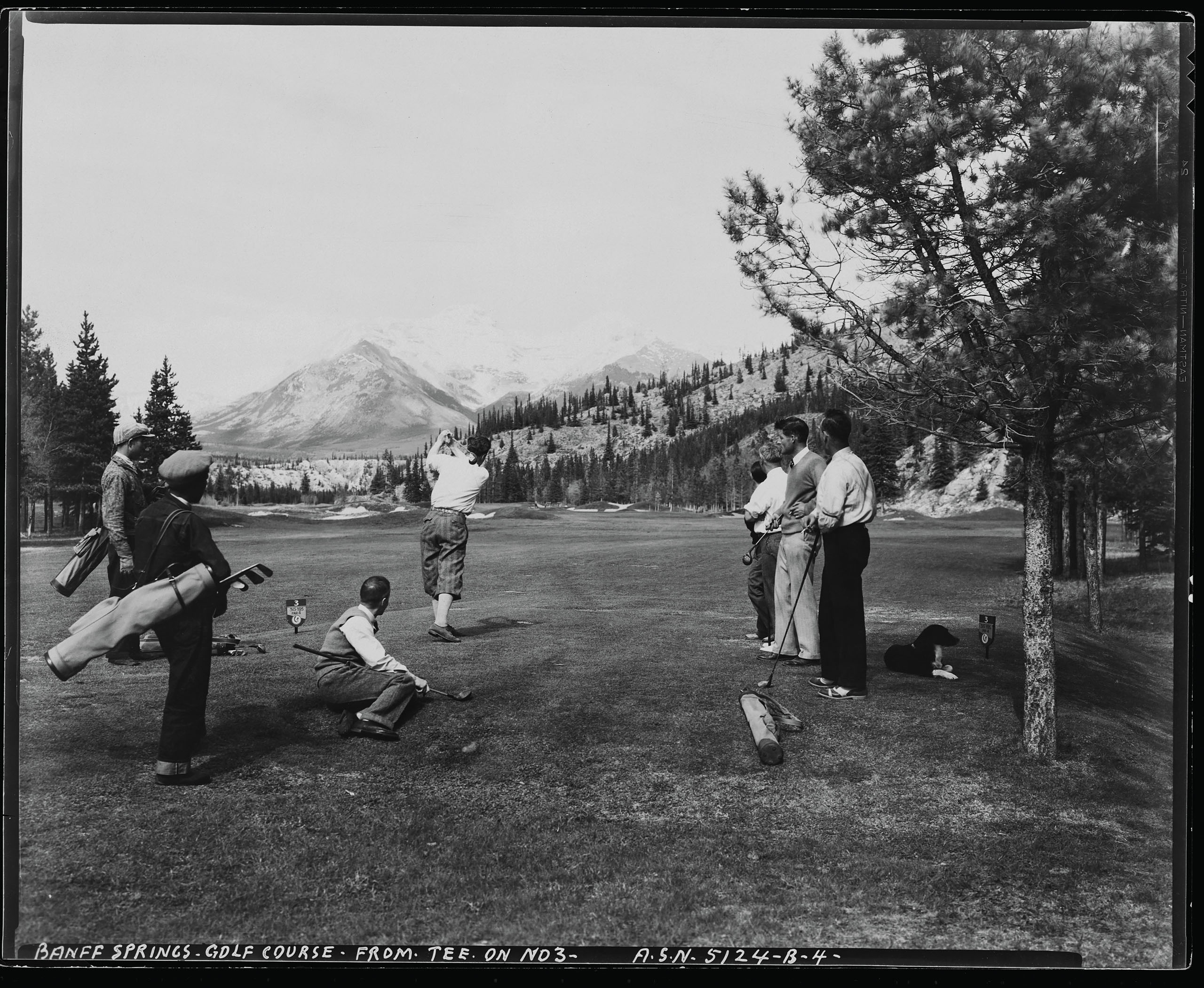 When the Banff Springs Golf Course opened, guests were treated to stunning views of the Canadian Rockies on nearly every shot. As Banff's status as a Canadian national park was cemented, tree removal became a more complex discussion. As a result, some of the intended wide-playing corridors have shrunk, limiting the strategy and angles of the design. Photo by Hulton Deutsch via Getty Images